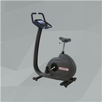 Profesionální ergometr RUNNER EM-7409