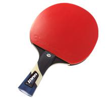 Pálky na stolní tenis