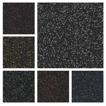 Sportovní podlaha SPORTEC COLOR 6 mm s 5% EPDM