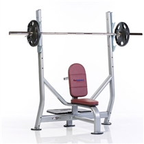 Posilovací lavice TUFF STUFF Shoulder press bench