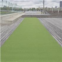 Sprinterská dráha z trávníku