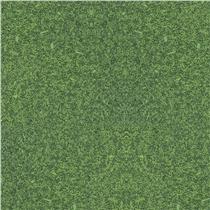 Zelená 1