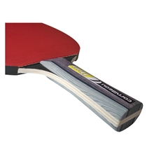 Sport pack duo cornilleau palky indoor ruojet