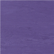 podlaha-pavigym-fitness-purple