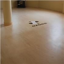 studiove podlahy pavigym bodymind logo posilovny