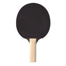 palka indoor cornilleau sport 100 backhand